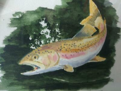 Vintage Hand Painted Pink Salmon Fish Fishing Watercolor Painting by Barry Bauer
