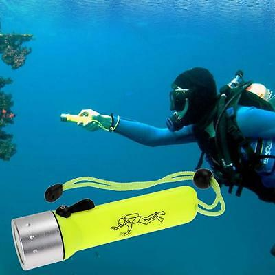2x TORCIA LED Subacquea 100 M LUCE WATERPROOF immersione diving SUB snorkeling