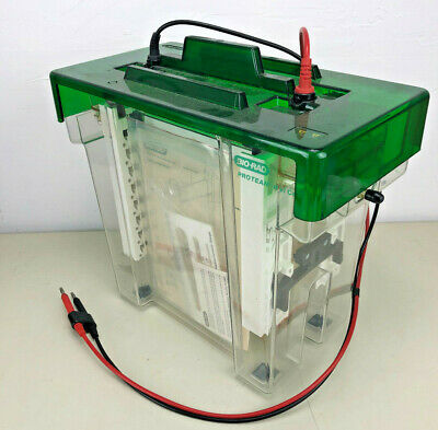 Bio-Rad Protean II xi Cell 97BR Vertical Gel Electrophoresis System