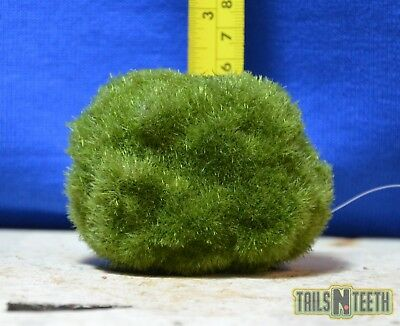 Floating Mossy Rock - Floating Decor Ornament for Aquariums - SMALL SIZE