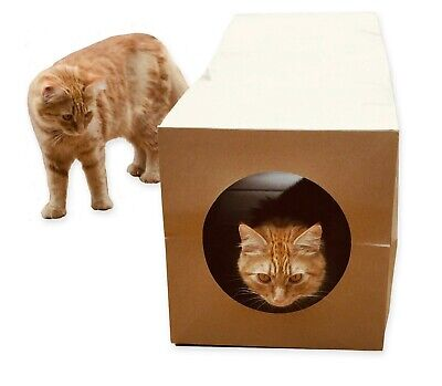 Cat Tunnel Toy, Heavy Paper, Collapsible, 1 metre long, for cats, kittens, pet
