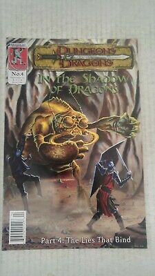 Dungeons & Dragons In The Shadows Of Dragons #4 2001 Kenzer And Company Comics