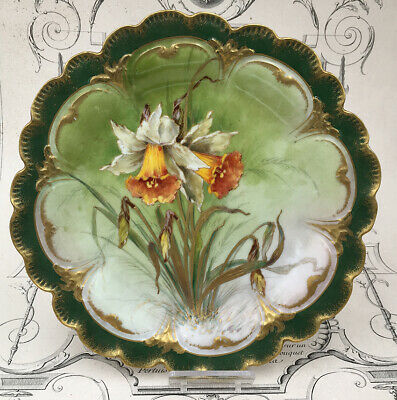 Plate Porcelain Goa Daffodil Flowers Vintage French Plate Sping Flower