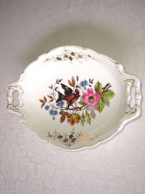 Antique HAND PAINTED Bird with  Flowers Fine Porcelain Handled Oval Bowl