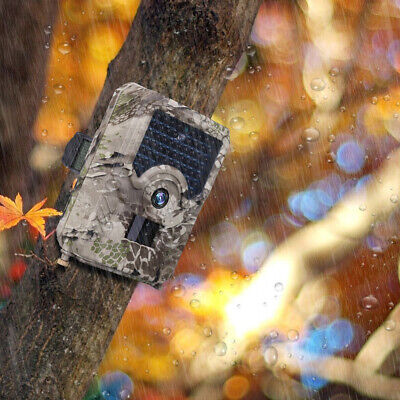 HD 1080P 12MP Hunting Trail Camera Video Wildlife Scouting Infrared Night Vision