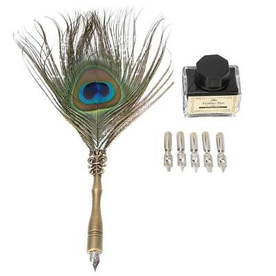 Calligraphy Peacock Feather Dip Quill Pen Writing Ink Bottle Set with 5Pcs Nibs
