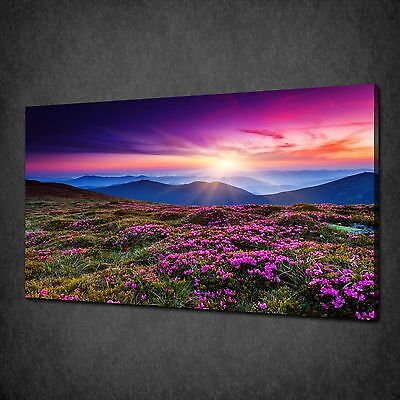 Mountains Purple Flowers Field Canvas Print Wall Art Picture Ready To Hang