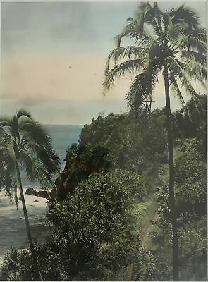 1920's Hand Colored  Silver Print Photograph Of Onomea Coastline Hawaii