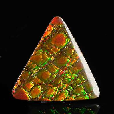 Imperial OPALIZED AMMOLITE Fossil - 2 sided, Jewelry Ammolite, Pendant 37222