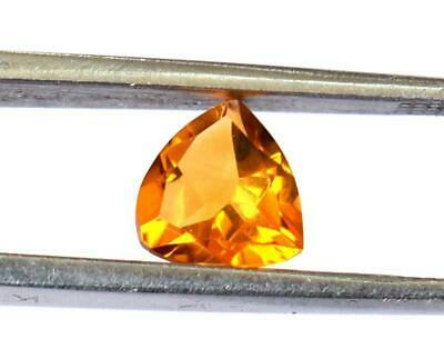 Natural Citrine Faceted Cut Loose Trillion 7 Mm Gemstone 1 Pc #1170 -B