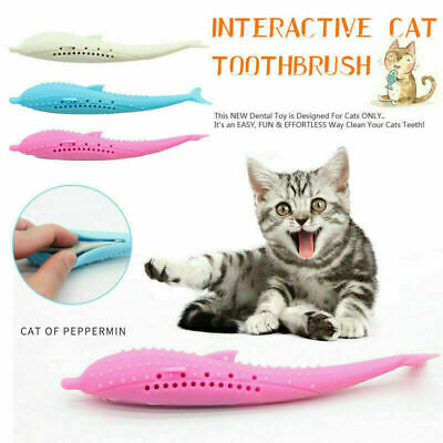 Interactive Cat Mint Toothbrush Pet Molar Stick Cleaning Teeth Silicone Toy USA