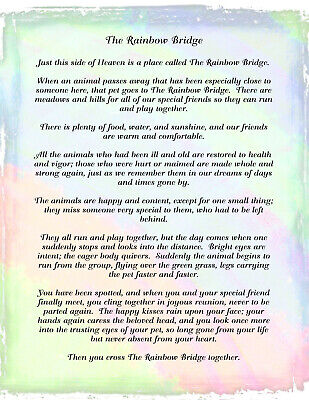 graphic about Rainbow Bridge Poem for Dogs Printable known as RAINBOW BRIDGE POEM dog reduction MEMORIAL pet dog cat horse