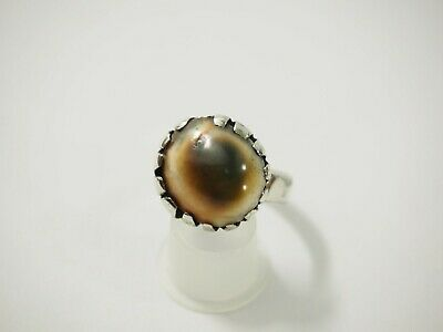 Cats Eye Operculum Shell RIng made from Genuine 1940s Florin Coin RIng