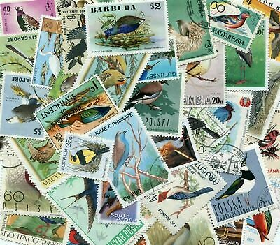 Lovely Birds of the World 50 Different Thematic Stamps Selection *STOCK PICTURE*
