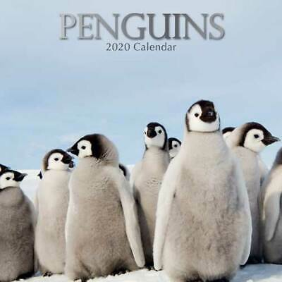 Penguins - Wall Calendar 2020