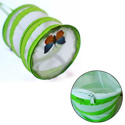 Fold Insect-proof Net Cage Observe Life Cycle Butterfly Garden Caterpillars Tool