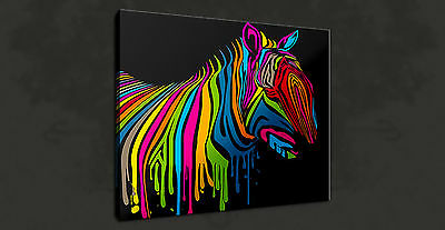 Colourful Zebra Abstract Animal Wall Art Picture Canvas Print Ready To Hang