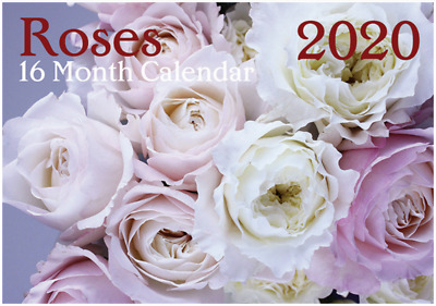 Roses - 2020 Rectangle Wall Calendar 16 Months by Artwrap (C)