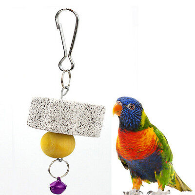 Parrot Bird Squirel Chew Bite Scratcher Bell Toy Teeth Grinding Parakeet ~GN