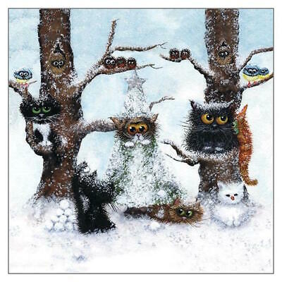 Let it Snow Funny Cat Christmas Greeting Card Tamsin Lord Humorous Greetings
