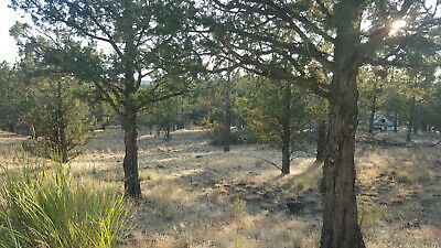 Modoc Recreational Estates - No Minimum / No Reserve