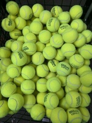 Lot of 50 Used Tennis Balls - Good Condition