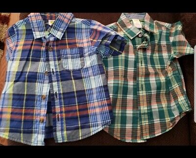 Gymboree Crazy 8 Button Down Shirts 12-18 Months