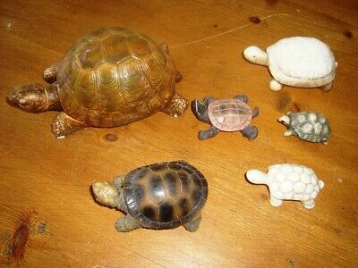 Collection Of 6 Tortoise/Turtle Made Of Resin Or Plaster.