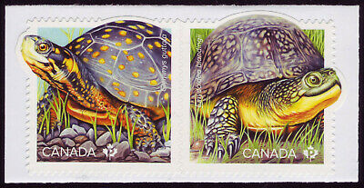 """CANADA 2019 Endangered Turtles, booklet pair, """"P"""" Blanding's, """"P"""" Spotted MNH"""