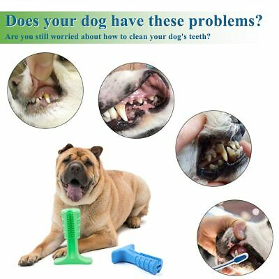 Doggie DIY Toothbrush 10% OFF TODAY