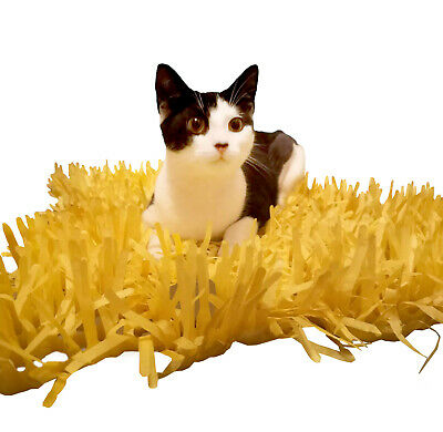 YELLOW Tissue Paper Grass Mat for cat or kitten toy FAST DELIVERY pet toys.