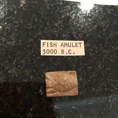 Rare Unusual Ancient Fish Amulet steatite drilled bead rev coil design c3000 BC