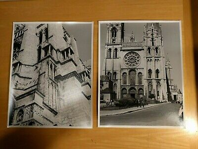 Lot of 55 Chartres Cathedral France Large Format 11x14 Original Photographs 1961