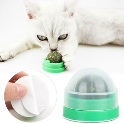 Pet Cat Toys Balls Catnip Pet Kitten Healthy Eating Ball Teeth Cleaning Toy New