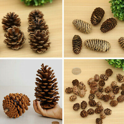 5/20Pcs Natural Dried Flowers Pine Cones Ornament Christmas Tree Decoration
