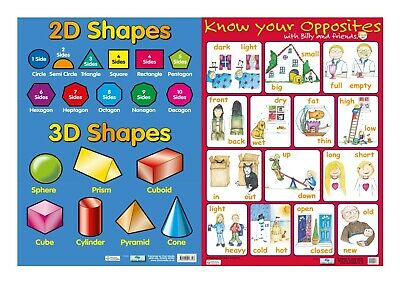 2D & 3D shapes + Know your Opposites - 2 Posters -  A2 size - Chart media