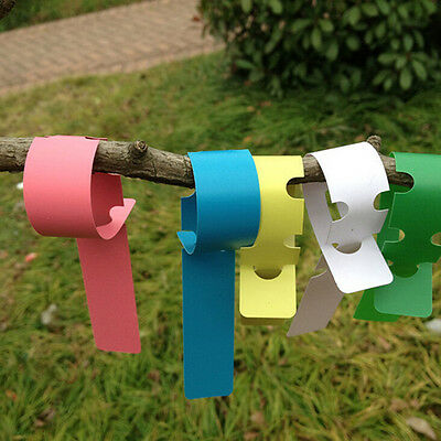 200X Plastic Plant Tree Hanging Markers Tags Nursery Seed Gardening Labels J~GN