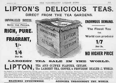 1895 Antique Print - ADVERTISING Liptons Tea Merchant Ceylon Chest Gardens  (50)
