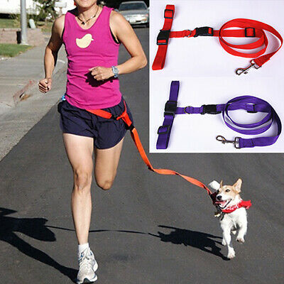 Hands Free Dog Leash Running Jogging Waist Belt Pet Training Leashes Trendy