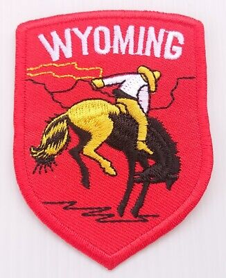 Wyoming Rider Horse Rodeo Retro P910 Embroidered Iron on Patch High Quality Bag