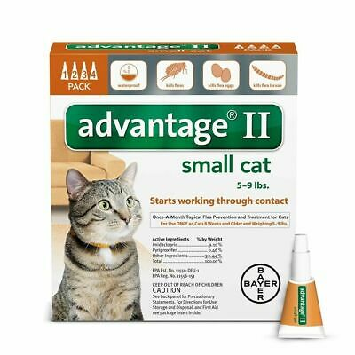 Bayer Advantage II Flea Control for Small Cats 5-9 lbs - Pack of 4 FREE SHIPPING