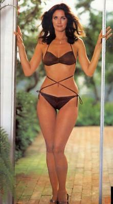 Lynda Carter 8x10 Photo Picture Very Nice Fast Free Shipping #3