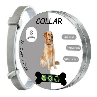 Pet Tick And Flea Remover Collar For Dogs/Cats, Kill Ticks & Fleas Treatment NEW