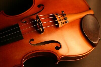 Fine Old Antique French Master Violin Made & Signed By Amedee Dieudonne, 1948.