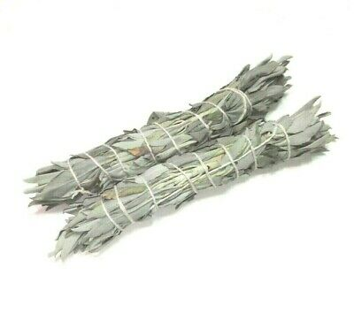 "White Sage Smudge Stick 8"" House Cleansing Negativity Removal Luck $ Bundle of 2"