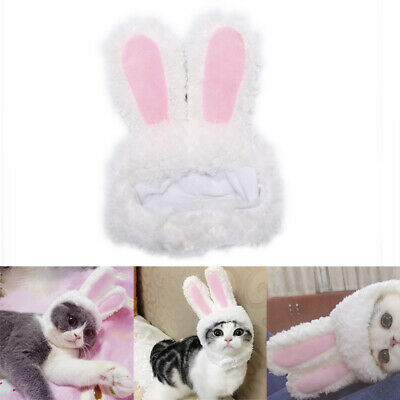 Cat bunny rabbit ears hat pet cat cosplay costumes for cat small dogs party ~GN