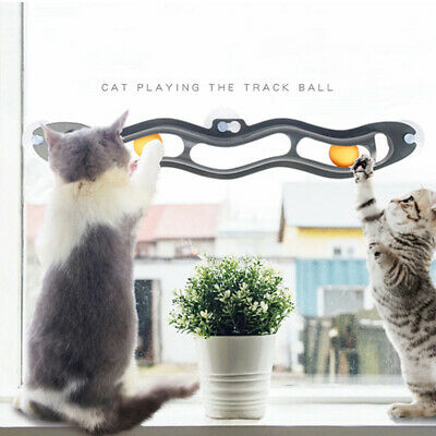 Interactive Track Ball toy Cat Window Suction Cup Track Ball Cat Toys Pet fav~GN