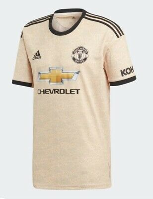Manchester United Away Shirt 19/20. Size Medium. Brand New With Tags.