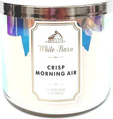 Bath and Body Works Crisp Morning Air 3 Wick Candle 14.5 oz Iridescence Design