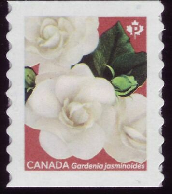 "CANADA 2019 Gardenia, coil single, #3167 ""P"" Cape jasmine with red back MNH"